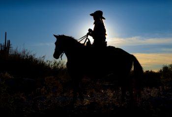 Cowboy at the Tanque Verde Ranch