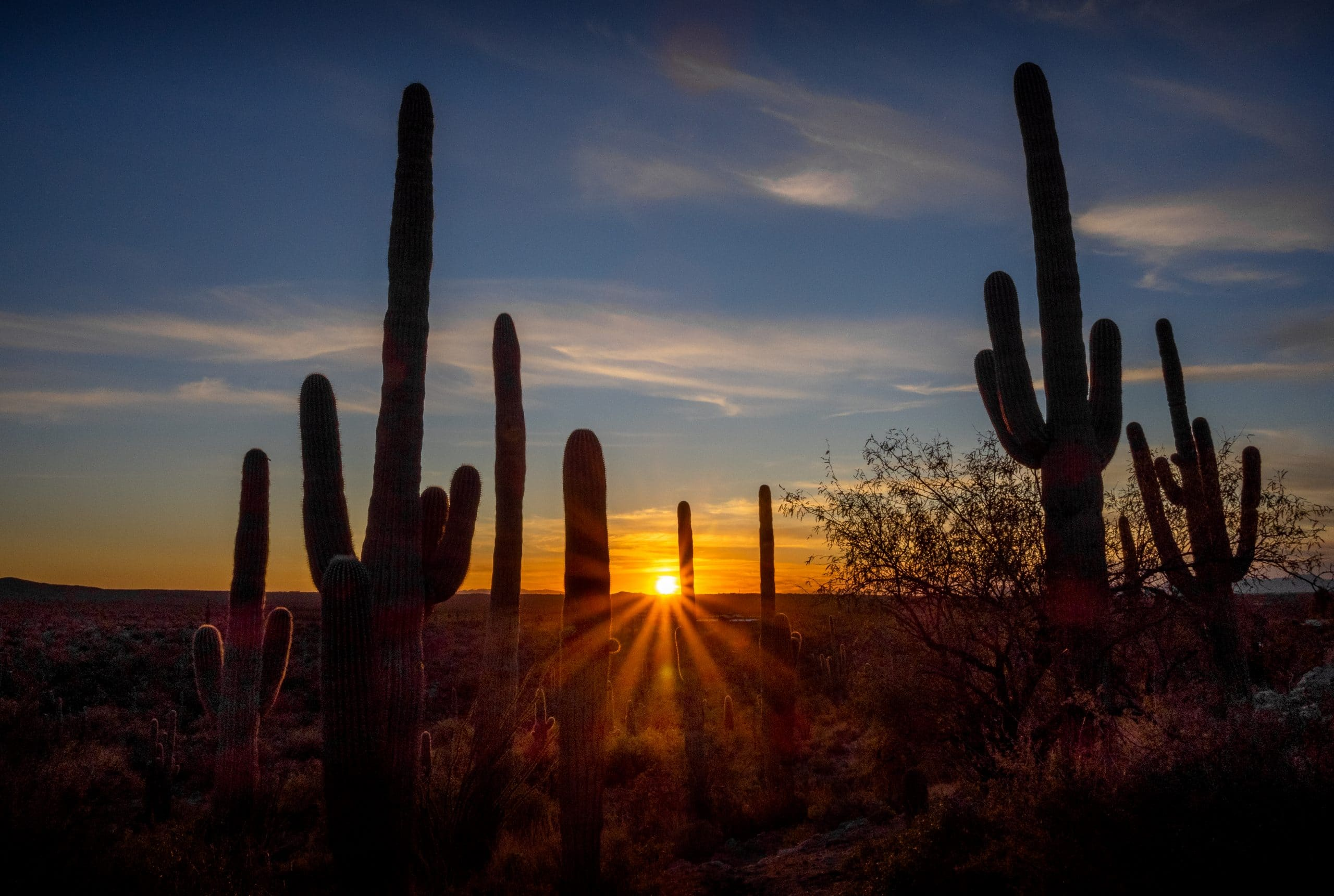 Sunset at the Tanque Verde Ranch