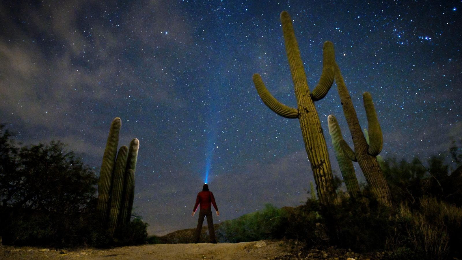Night Sky shot with Starry AF